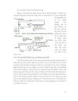 Dinh dương và Thức ăn cho bò part 4 pdf