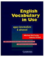 cambridge english vocabulary in use pre intermediate advanced phần 1 ppt