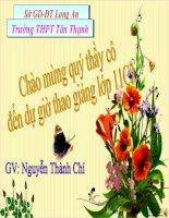 bài 56 dinh dưỡng nito ở thực vật
