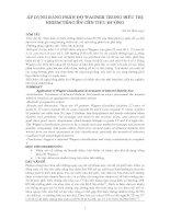 ÁP DỤNG BẢNG PHÂN ĐỘ WAGNER TRONG ĐIỀU TRỊ NHIỄM TRÙNG BÀN CHÂN TIỂU ĐƯỜNG pdf