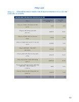 Giáo trình hướng dẫn hình thức mua bán sản phẩm bằng thẻ tín dụng trên internet phần 9 pps