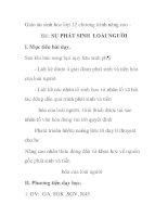 Giáo án sinh học lớp 12 chương trình nâng cao - Bài: SỰ PHÁT SINH LOÀI NGƯỜI ppsx