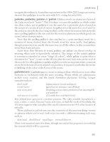 The Cambridge Guide to Australian English Usage phần 8 potx