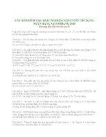 Đề thi nhân viên tín dụng ngân hàng Sacombank 2010 pdf