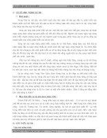 ĐỒ ÁN TỐT NGHIỆP KỸ SƯ XÂY DỰNG DÂN DỤNG THIẾT KẾ TRUNG TÂM GIÁM ĐỊNH HÀNG HÓA