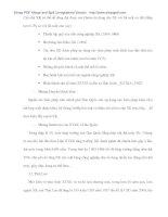 Giải pháp đẩy mạnh xúc tiến thương mại trong xuất nhập khẩu của Chính phủ cho Doanh nghiệp ở Đà Nẵng - 4 pdf