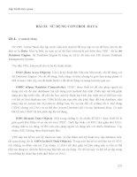 LẬP TRÌNH TRỰC QUAN - PHẦN II VISUAL BASIC - BÀI 22 pdf