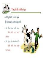 Một số vấn đề về quản lý sinh sản ở bò sữa part 7 potx