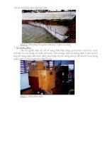 Kỹ thuật nuôi tôm bán thâm canh - thâm canh thân thiện với môi trường part 6 doc