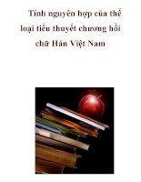 Tính nguyên hợp của thể loại tiểu thuyết chương hồi chữ Hán Việt Nam _1 doc