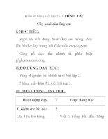 Giáo án tiếng việt lớp 2 - CHÍNH TẢ: Cây xoài của ông em pdf