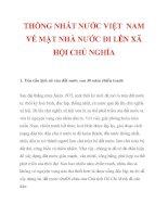 THỐNG NHẤT NƯỚC VIỆT NAM VỀ MẶT NHÀ NƯỚC ĐI LÊN XÃ HỘI CHỦ NGHĨA_1 potx