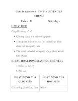 Giáo án toán lớp 5 - Tiết 54 : LUYỆN TẬP CHUNG pptx