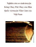 Nghiên cứu so sánh truyện Kông Chuy Pát Chuy của Hàn Quốc và truyện Tấm Cám của Việt Nam pps