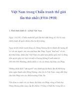 Việt Nam trong Chiến tranh thế giới lần thứ nhất (1914-1918)_1 ppsx