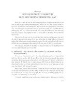 Các quá trình và thiết bị công nghệ sinh học : THIẾT BỊ NUÔI CẤY VI SINH VẬT TRÊN MÔI TRƯỜNG DINH DƯỠNG RẮN part 1 pps