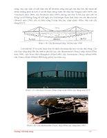 Giáo trình giới thiệu đặc điểm chung về kết cấu của cầu kim loại p3 ppt
