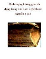 Hình tượng không gian đa dạng trong văn xuôi nghệ thuật Nguyễn Tuân . doc