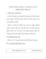 Giáo án tiếng việt lớp 5 - Luyện từ và câu: TỔNG KẾT VỐN TỪ pptx