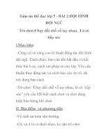 Giáo án thể dục lớp 5 - BÀI 2:ĐỘI HÌNH ĐỘI NGŨ potx