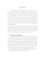 GIAN LẬN TRONG KẾ TOÁN THỦ TỤC PHÁT HIỆN GIAN LẬN VÀ TRÁCH NHIỆM CỦA KIỂM TOÁN VIÊN ĐỐI VỚI GIAN LẬN TRONG KIỂM TOÁN BÁO CÁO TÀI CHÍNH