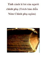 Tình cảnh lẻ loi của người chinh phụ (Trích bản diễn Nôm Chinh phụ ngâm ppsx