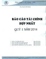 Tổng công ty việt thắng báo cáo tài chính hợp nhất quý 1 năm 2014