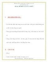 Giáo án chương trình mới: Lớp Chồi Đề tài : BÉ BIẾT GÌ VỀ CÁ BIỂN pdf