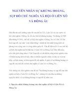 NGUYÊN NHÂN SỰ KHỦNG HOẢNG, SỤP ĐỔ CHỦ NGHĨA XÃ HỘI Ở LIÊN XÔ VÀ ĐÔNG ÂU_1 potx