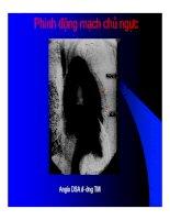 Thực hành x quang tim mạch part 10 ppt