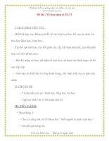 Giáo án chương trình mới: Lớp Chồi Đề tài : Vẽ hoa tặng cô 20 /11 pdf