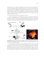 Giáo trình di truyền học và vi sinh vật ứng dụng part 10 pdf