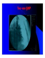 Thực hành x quang tim mạch part 8 docx