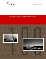 Corporate sustainable development report 2011 100 years of strength performance passion holcim