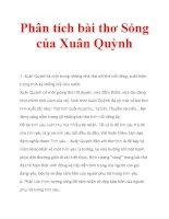 Phân tích bài thơ Sóng của Xuân Quỳnh pdf