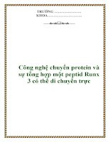 Công nghệ chuyển protein và sự tổng hợp một peptid Runx 3 có thể di chuyển trực doc