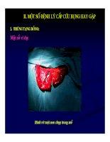Chẩn doán hình ảnh : Cấp cưu bụng part 7 pdf