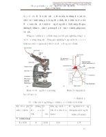 Giáo trình thực tập vi sinh cở sở part 3 ppt