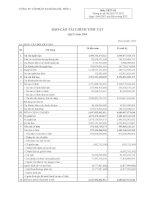 CÔNG TY cổ PHẦN xi măng hà tiên 1 báo cáo tài chính quý 2 năm 2009