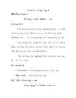 Giáo án tin học lớp 8 - Bài thực hành 5: Sử dụng lệnh While … do tiết 2 pps