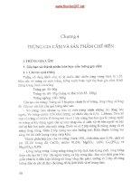 Giáo trình - Thương phẩm hàng thực phẩm - phần 2-chương 4-5 doc