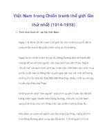 Việt Nam trong Chiến tranh thế giới lần thứ nhất (1914-1918)_1 pdf