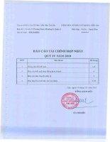 CÔNG TY cổ PHẦN PHÁT TRIỂN NHÀ THỦ đức báo cáo tài chính hợp nhất quý 4 năm 2010
