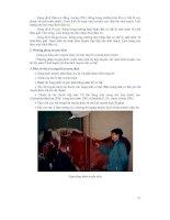 Giáo trình bệnh nội khoa gia súc part 2 pptx
