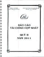 CÔNG TY cổ PHẦN PHÁT TRIỂN NHÀ THỦ đức báo cáo tài chính hợp nhất quý 2 năm 2011