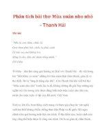 Phân tích bài thơ Mùa xuân nho nhỏ - Thanh Hải ppsx