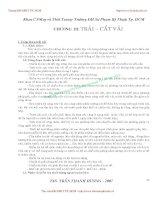 GIÁO TRÌNH CÔNG NGHỆ MAY TRANG PHỤC 2 - CHƯƠNG III: TRẢI – CẮT VẢI pot