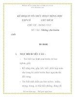 Giáo án mầm non chương trình đổi mới: KẾ HOẠCH TỔ CHỨC HOẠT ĐỘNG HỌC TẬP CÓ CHỦ ĐÍCH - hững chú bướm xinh pdf