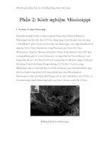 Thử tìm giải pháp thủy lợi cho đồng bằng sông Cửu Long - Phần 2: Kinh nghiệm Mississippi pptx