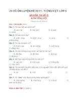 20 ĐỀ ÔN LUYỆN HÈ 2011- TIẾNG VIỆT LỚP 5 ĐỀ 10+11+12 potx